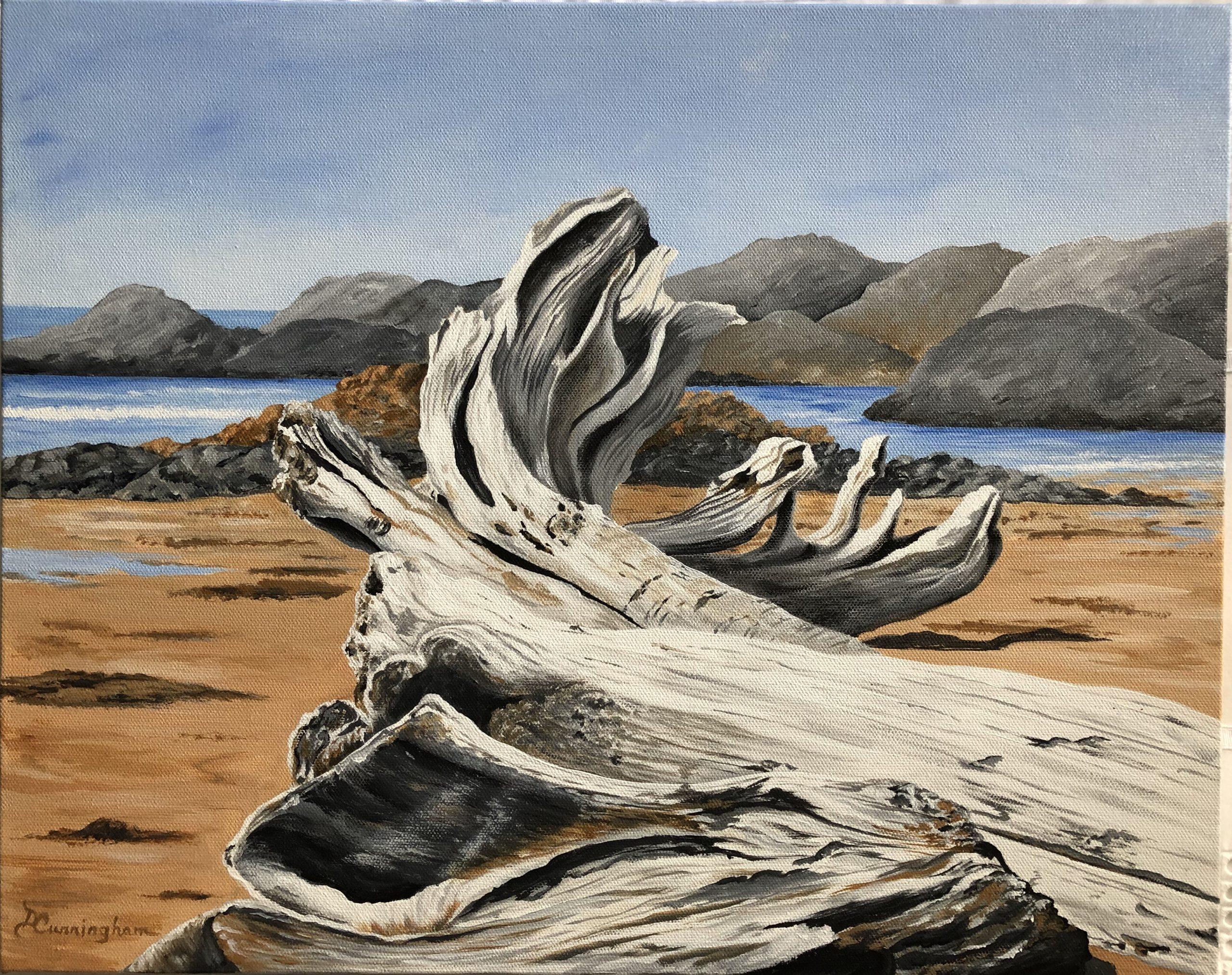 Debbie-Driftwood
